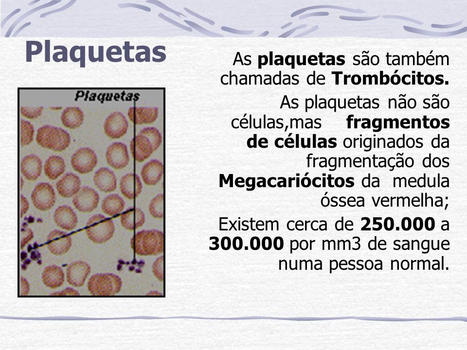 Plaquetas As plaquetas são também chamadas de Trombócitos.