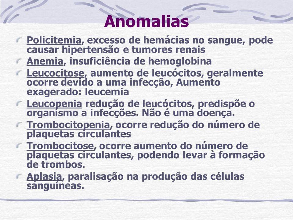 Anomalias Policitemia, excesso de hemácias no sangue, pode causar hipertensão e tumores renais. Anemia, insuficiência de hemoglobina.