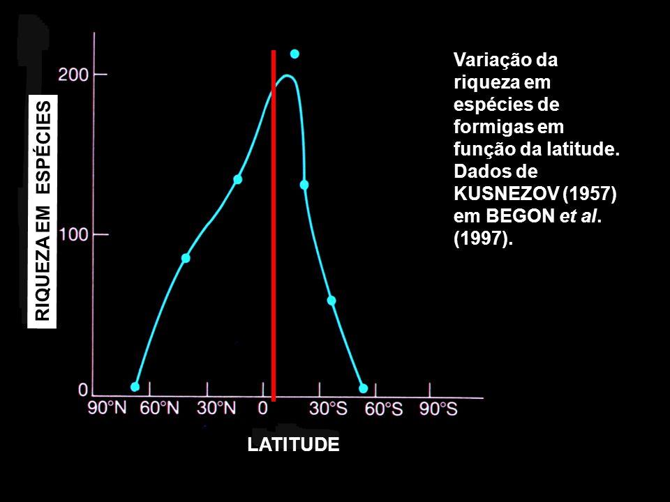Variação da riqueza em espécies de formigas em função da latitude