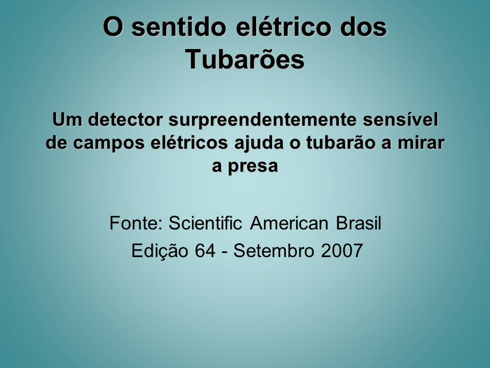 Fonte: Scientific American Brasil Edição 64 - Setembro 2007