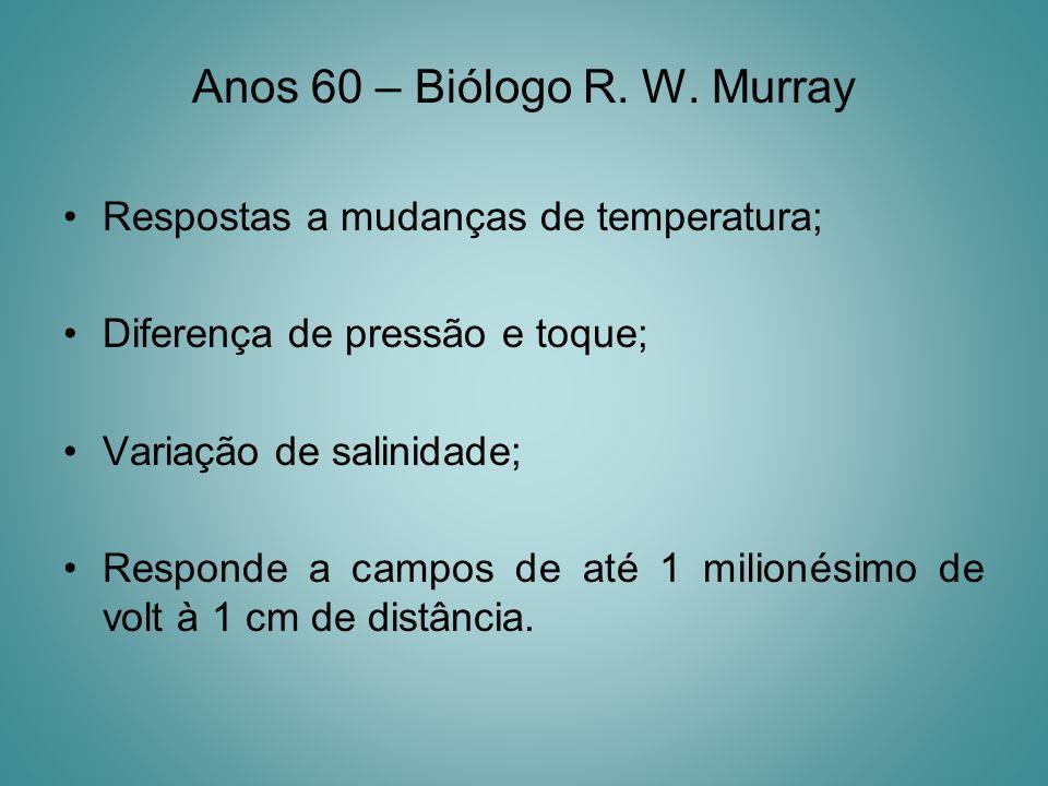 Anos 60 – Biólogo R. W. Murray