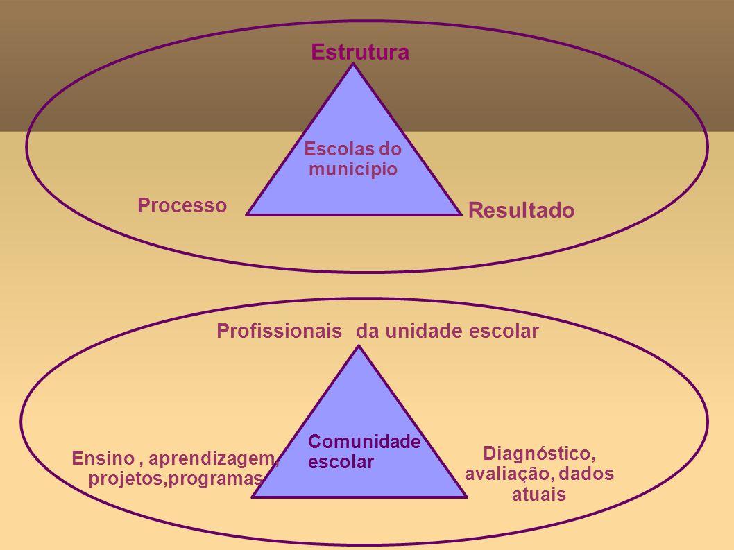 Estrutura Resultado Processo Profissionais da unidade escolar