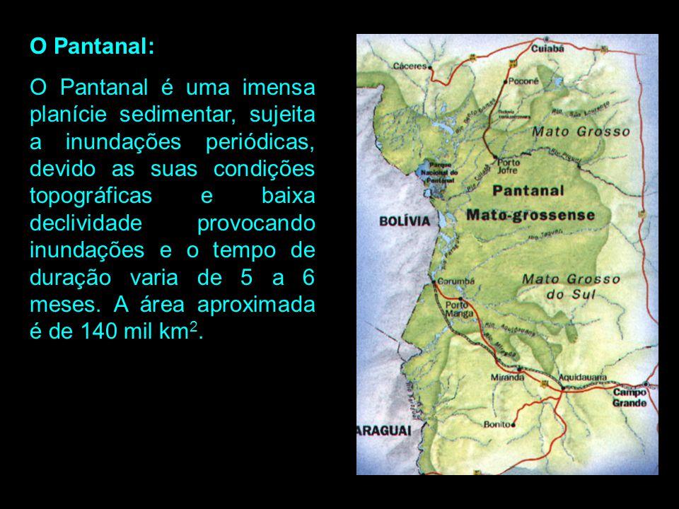 O Pantanal: