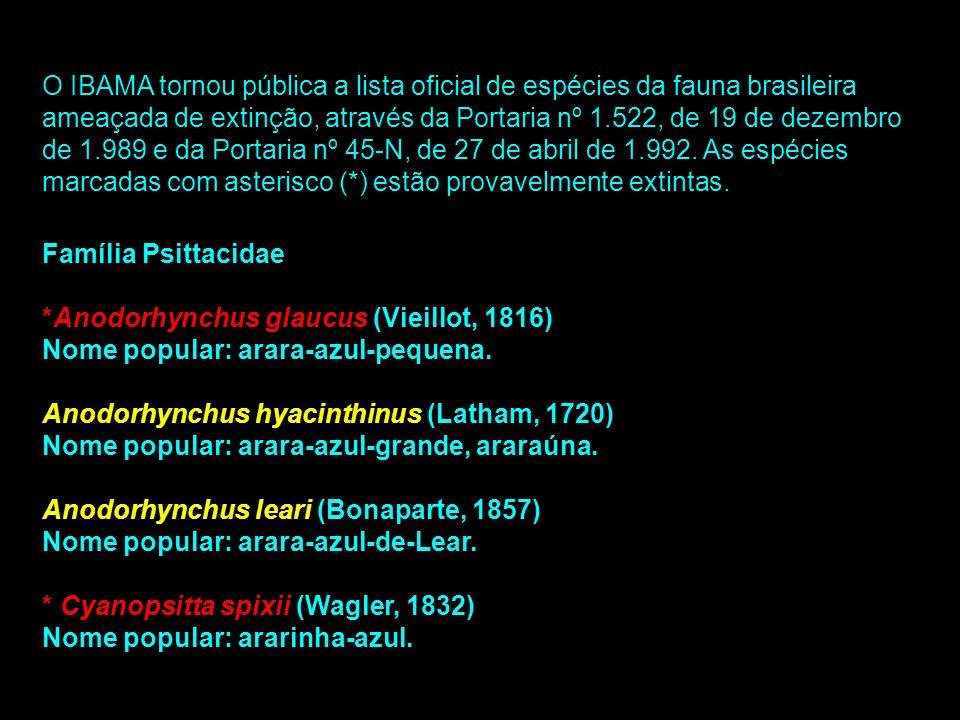 O IBAMA tornou pública a lista oficial de espécies da fauna brasileira ameaçada de extinção, através da Portaria nº 1.522, de 19 de dezembro de 1.989 e da Portaria nº 45-N, de 27 de abril de 1.992. As espécies marcadas com asterisco (*) estão provavelmente extintas.