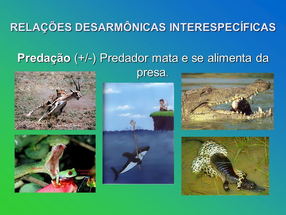 RELAÇÕES DESARMÔNICAS INTERESPECÍFICAS