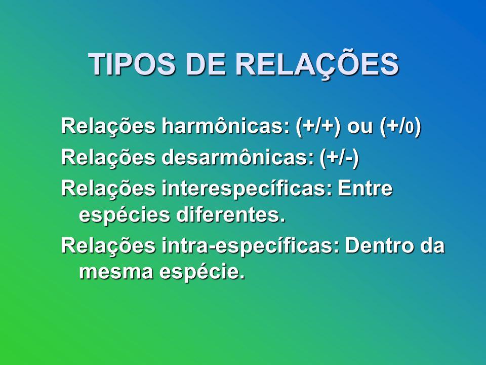TIPOS DE RELAÇÕES Relações harmônicas: (+/+) ou (+/0)