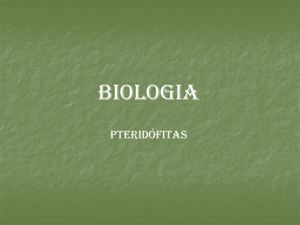 BIOLOGIA PTERIDÓFITAS