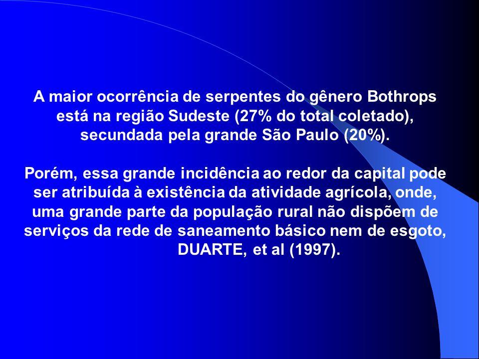 A maior ocorrência de serpentes do gênero Bothrops está na região Sudeste (27% do total coletado), secundada pela grande São Paulo (20%).