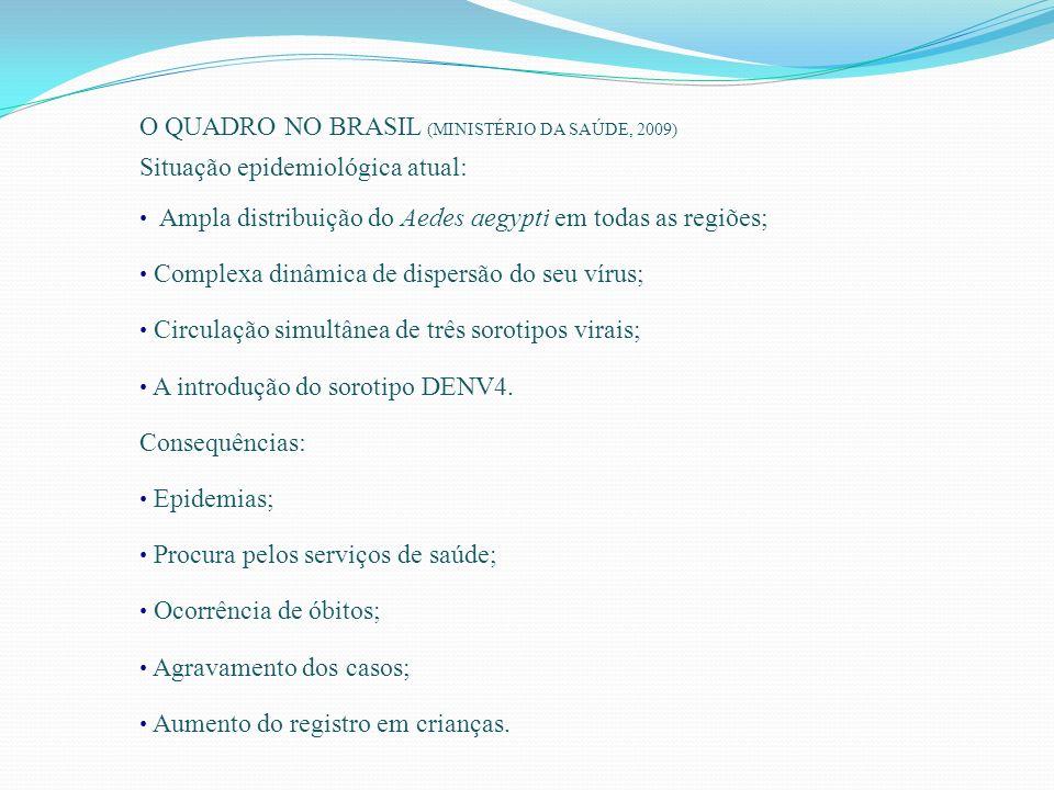 O QUADRO NO BRASIL (MINISTÉRIO DA SAÚDE, 2009)