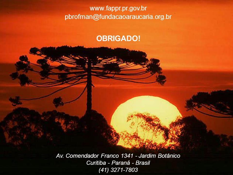 OBRIGADO! www.fappr.pr.gov.br pbrofman@fundacaoaraucaria.org.br