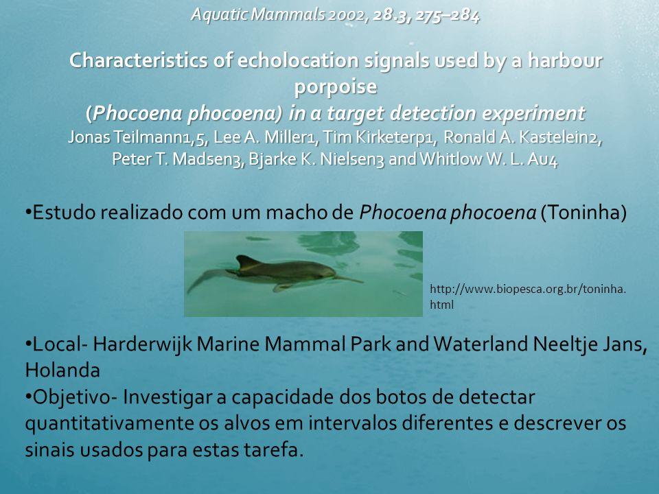Estudo realizado com um macho de Phocoena phocoena (Toninha)
