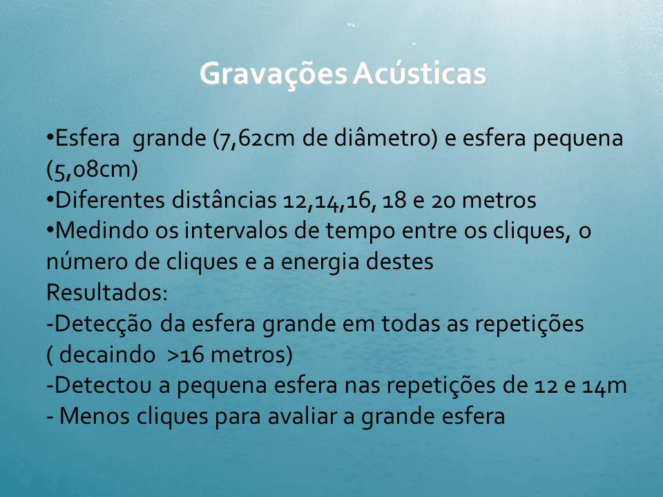Gravações Acústicas Esfera grande (7,62cm de diâmetro) e esfera pequena (5,08cm) Diferentes distâncias 12,14,16, 18 e 20 metros.