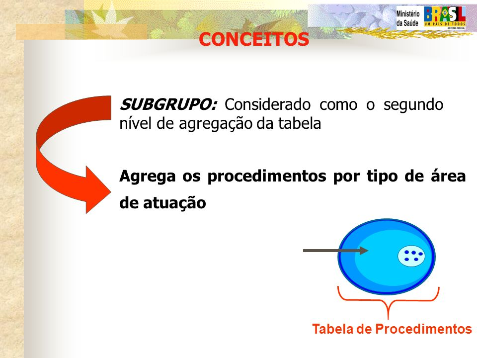 CONCEITOS SUBGRUPO: Considerado como o segundo nível de agregação da tabela. Agrega os procedimentos por tipo de área de atuação.