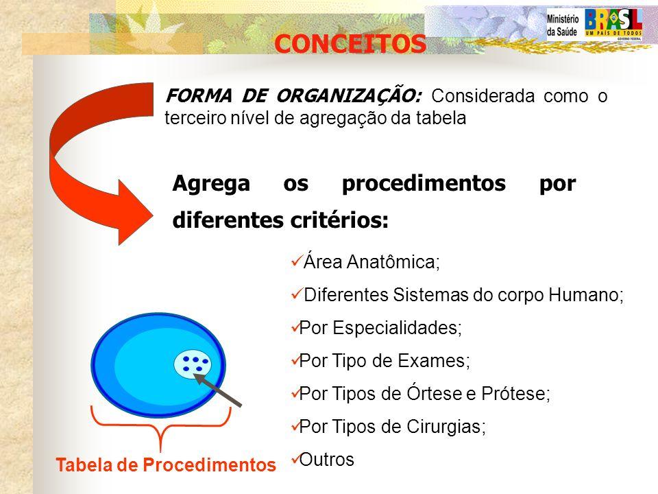 CONCEITOS Agrega os procedimentos por diferentes critérios: