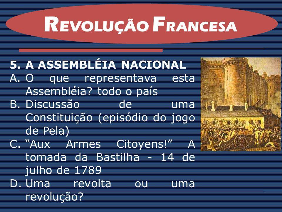 REVOLUÇÃO FRANCESA A ASSEMBLÉIA NACIONAL