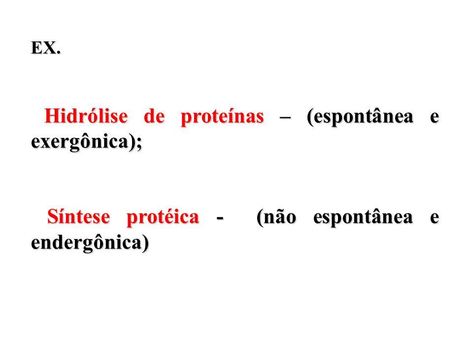 Síntese protéica - (não espontânea e endergônica)