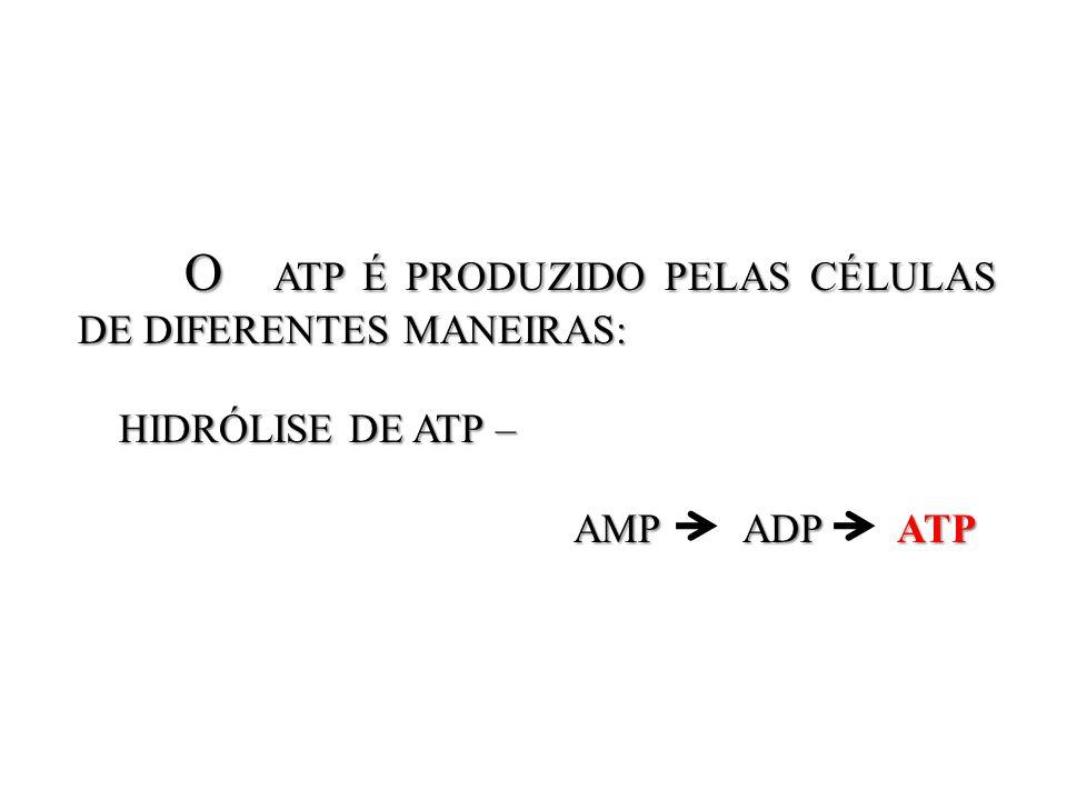 O ATP É PRODUZIDO PELAS CÉLULAS DE DIFERENTES MANEIRAS: