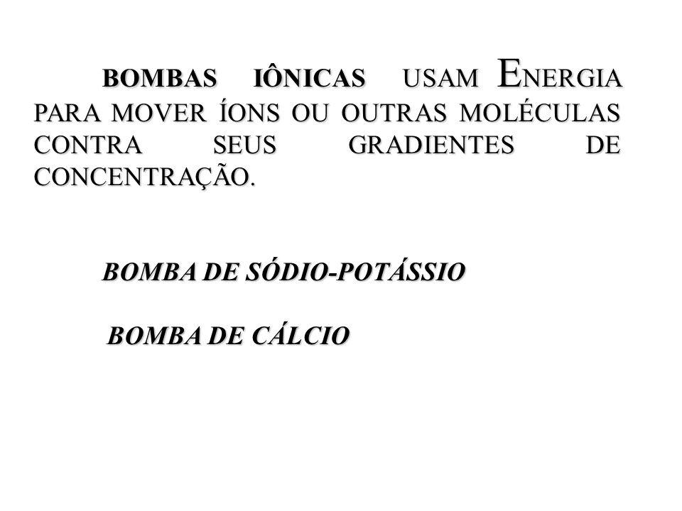 BOMBAS IÔNICAS USAM ENERGIA PARA MOVER ÍONS OU OUTRAS MOLÉCULAS CONTRA SEUS GRADIENTES DE CONCENTRAÇÃO.