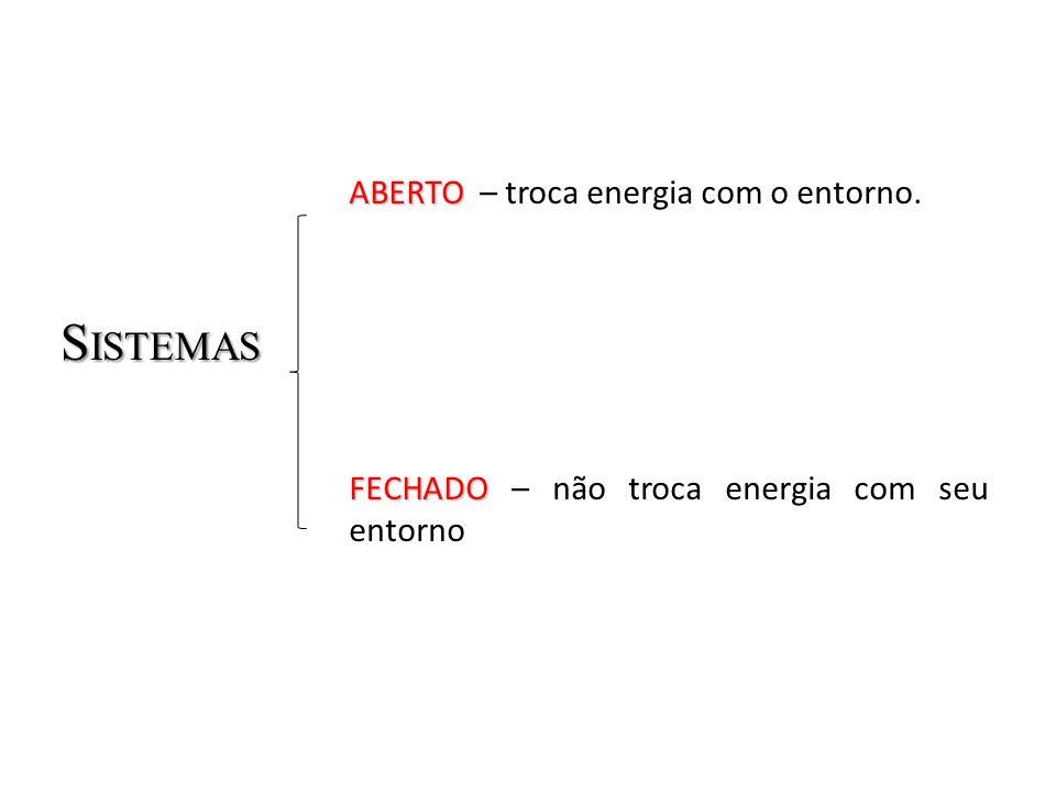 SISTEMAS ABERTO – troca energia com o entorno.