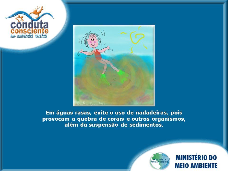 Em águas rasas, evite o uso de nadadeiras, pois provocam a quebra de corais e outros organismos, além da suspensão de sedimentos.