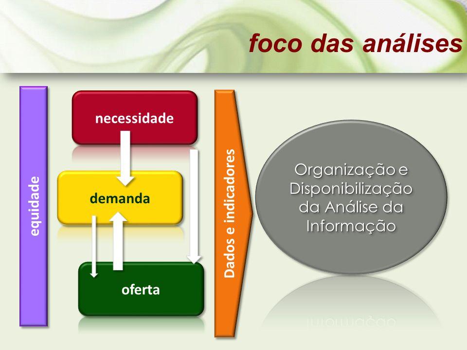 Organização e Disponibilização da Análise da Informação