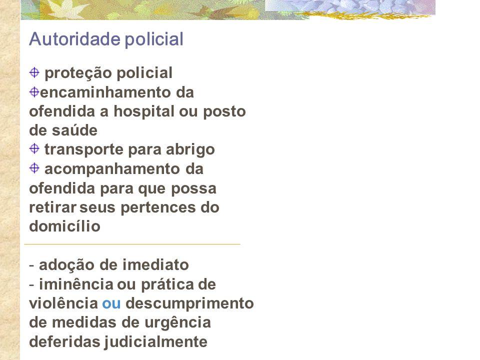 Autoridade policial proteção policial