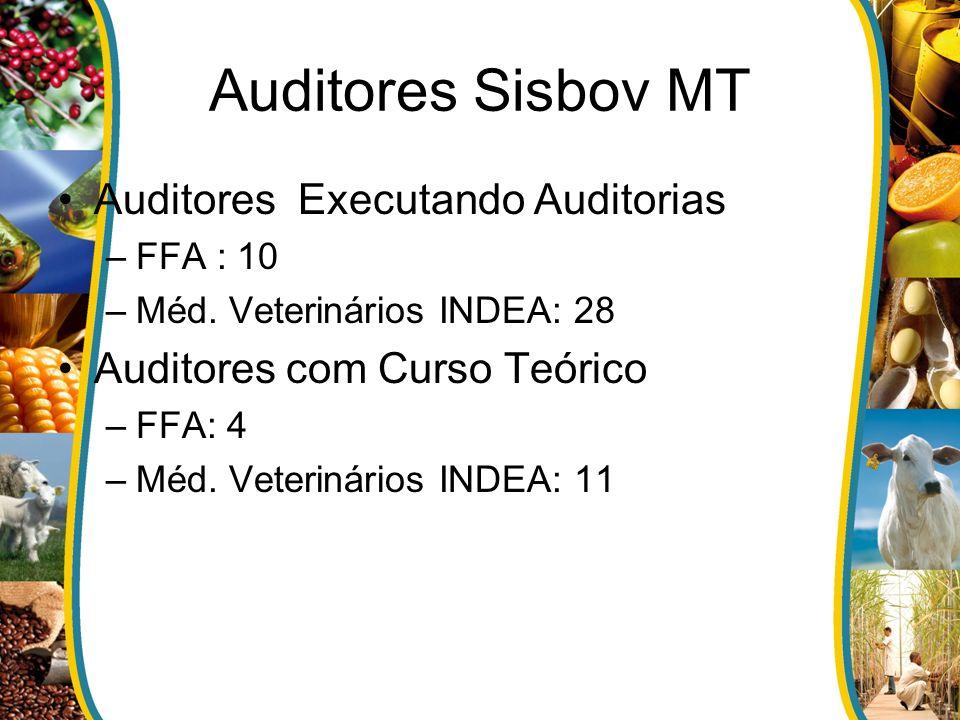 Auditores Sisbov MT Auditores Executando Auditorias