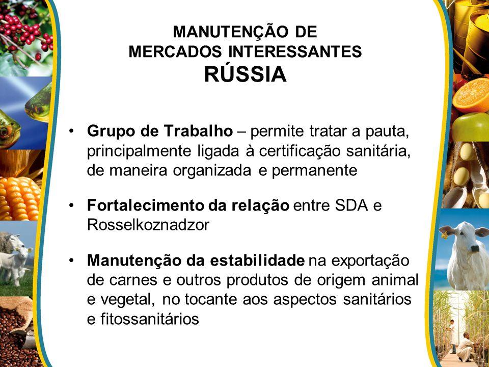 MANUTENÇÃO DE MERCADOS INTERESSANTES RÚSSIA