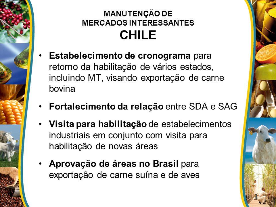 MANUTENÇÃO DE MERCADOS INTERESSANTES CHILE
