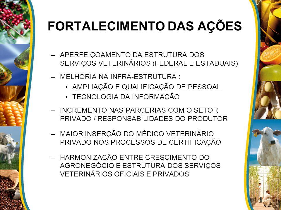 FORTALECIMENTO DAS AÇÕES