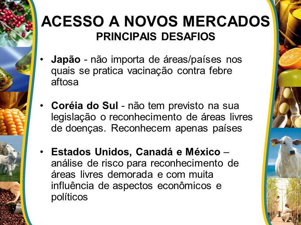 ACESSO A NOVOS MERCADOS PRINCIPAIS DESAFIOS
