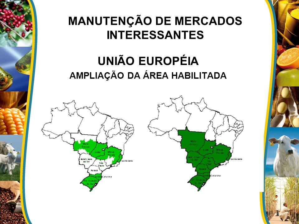 MANUTENÇÃO DE MERCADOS INTERESSANTES