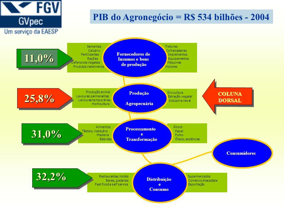 PIB do Agronegócio = R$ 534 bilhões - 2004