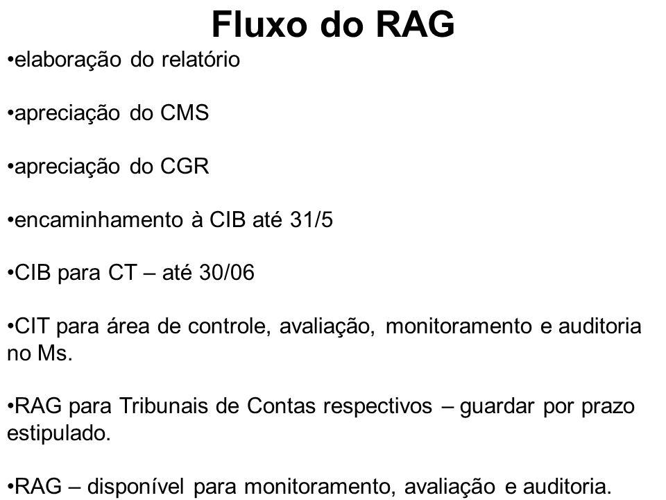 Fluxo do RAG elaboração do relatório apreciação do CMS