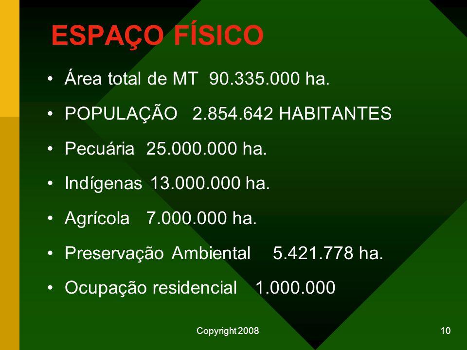 ESPAÇO FÍSICO Área total de MT 90.335.000 ha.