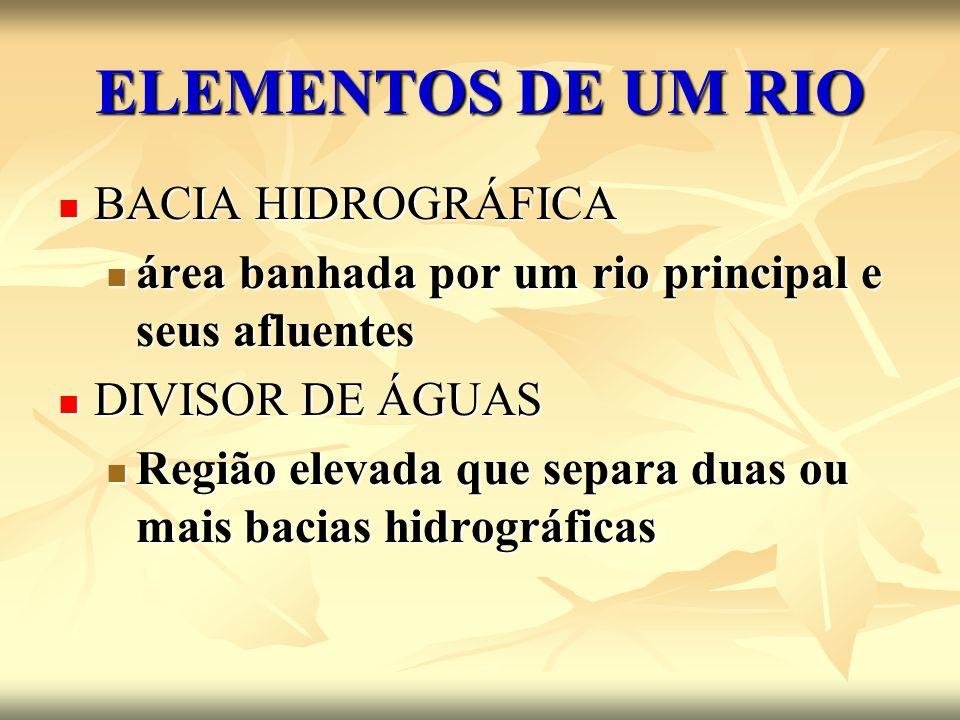 ELEMENTOS DE UM RIO BACIA HIDROGRÁFICA