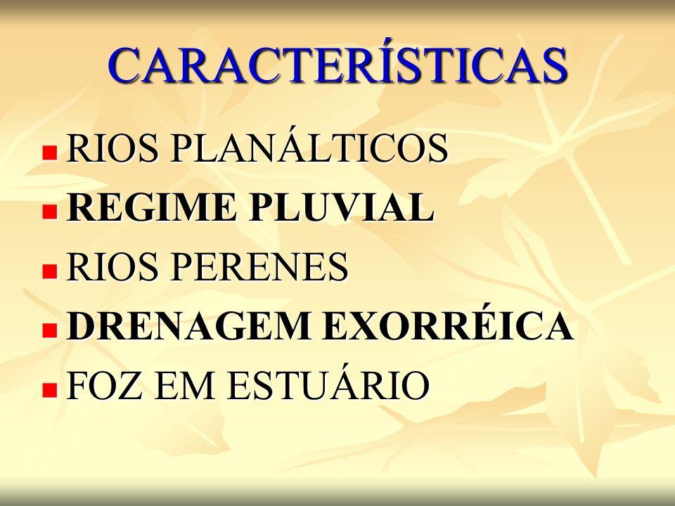 CARACTERÍSTICAS RIOS PLANÁLTICOS REGIME PLUVIAL RIOS PERENES