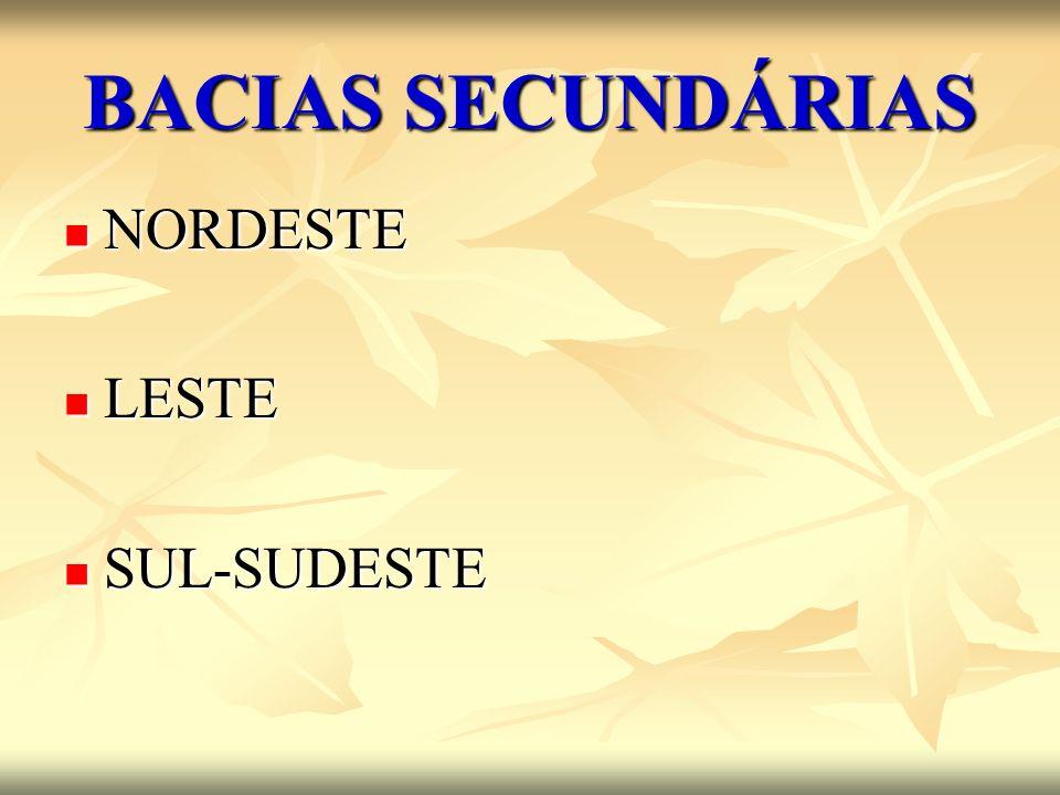 BACIAS SECUNDÁRIAS NORDESTE LESTE SUL-SUDESTE