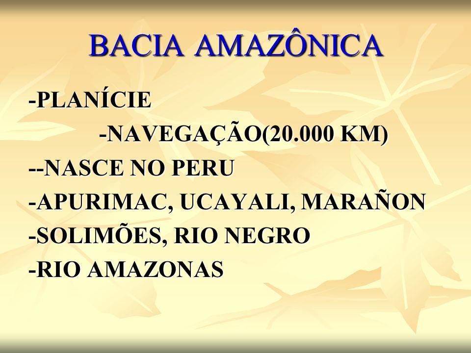 BACIA AMAZÔNICA -PLANÍCIE -NAVEGAÇÃO(20.000 KM) --NASCE NO PERU