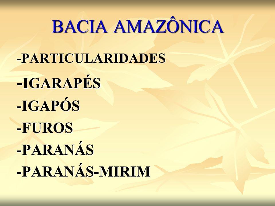 BACIA AMAZÔNICA -IGARAPÉS -IGAPÓS -FUROS -PARANÁS -PARANÁS-MIRIM