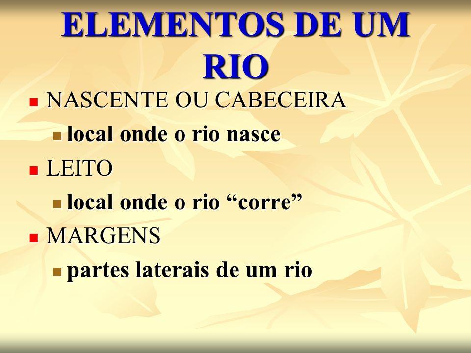 ELEMENTOS DE UM RIO NASCENTE OU CABECEIRA local onde o rio nasce LEITO