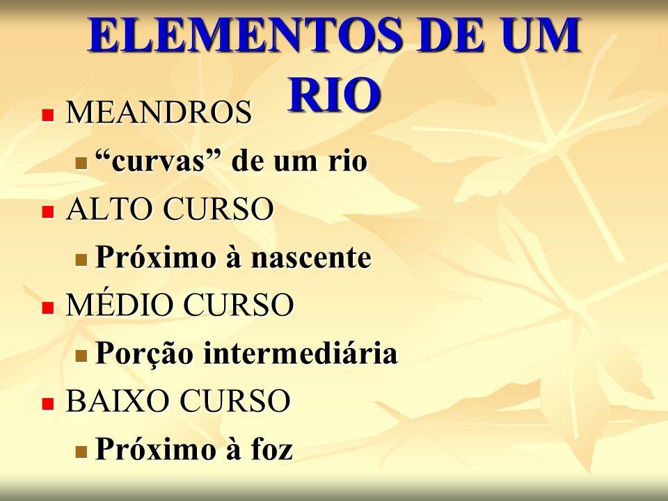 ELEMENTOS DE UM RIO MEANDROS curvas de um rio ALTO CURSO