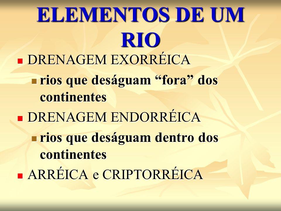 ELEMENTOS DE UM RIO DRENAGEM EXORRÉICA