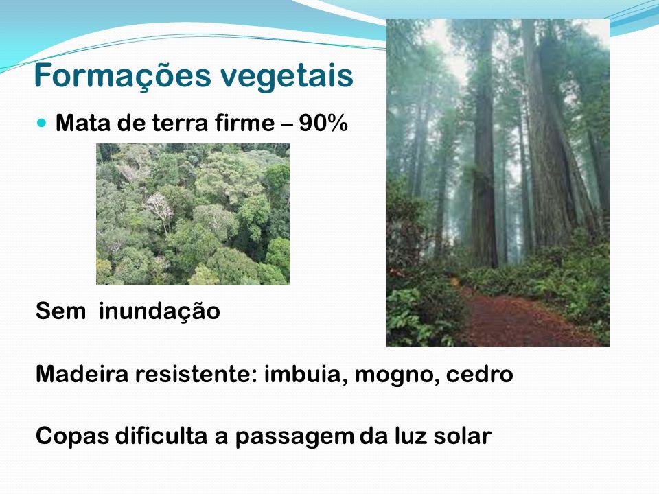 Formações vegetais Mata de terra firme – 90% Sem inundação