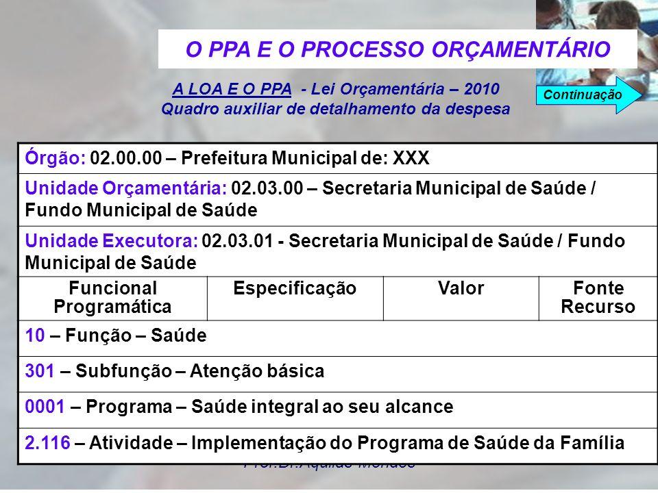 O PPA E O PROCESSO ORÇAMENTÁRIO