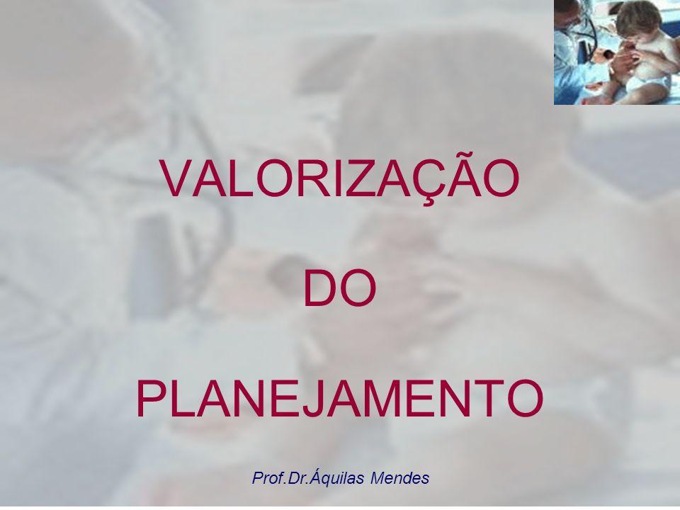 VALORIZAÇÃO DO PLANEJAMENTO Prof.Dr.Áquilas Mendes