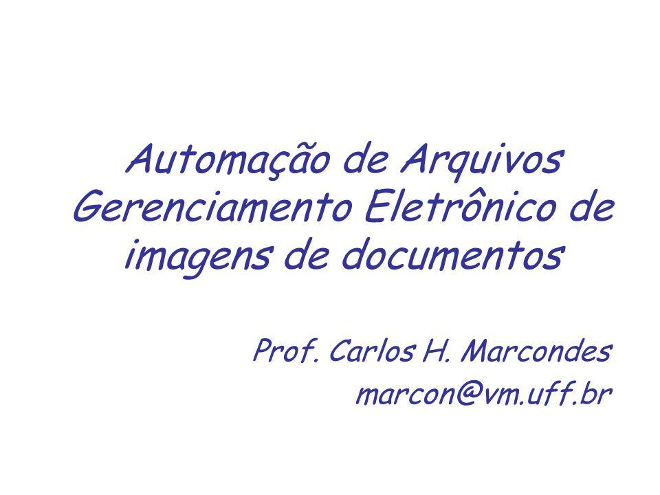 Prof. Carlos H. Marcondes marcon@vm.uff.br
