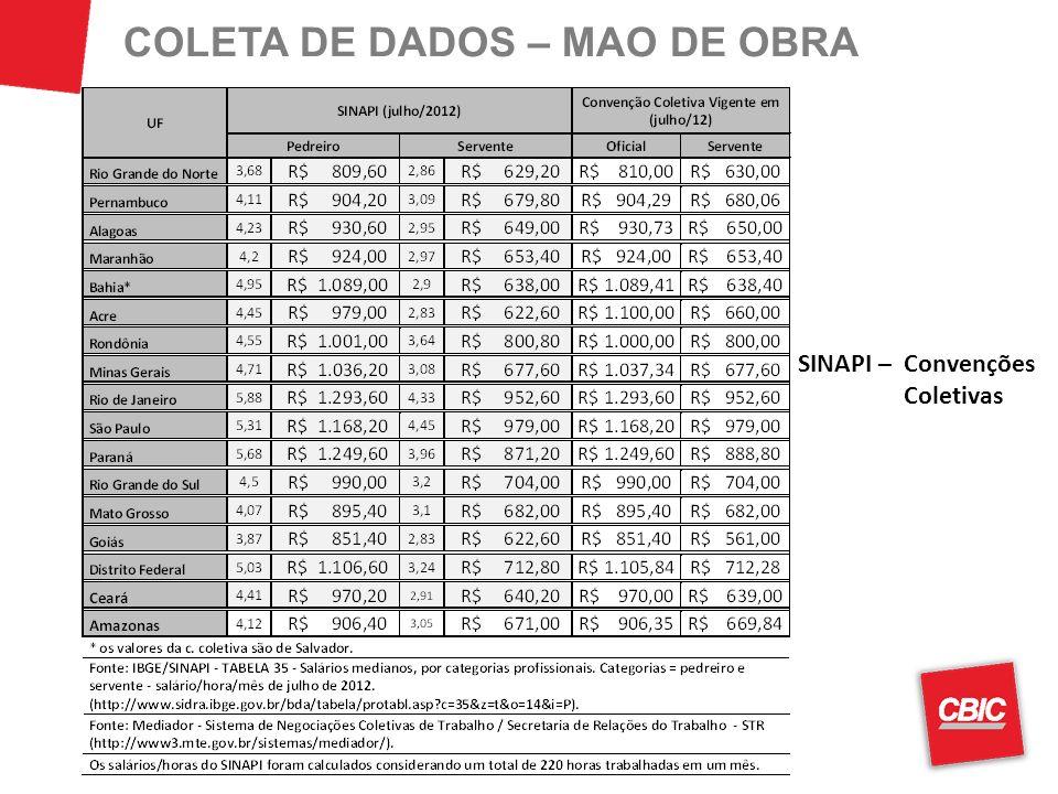 COLETA DE DADOS – MAO DE OBRA
