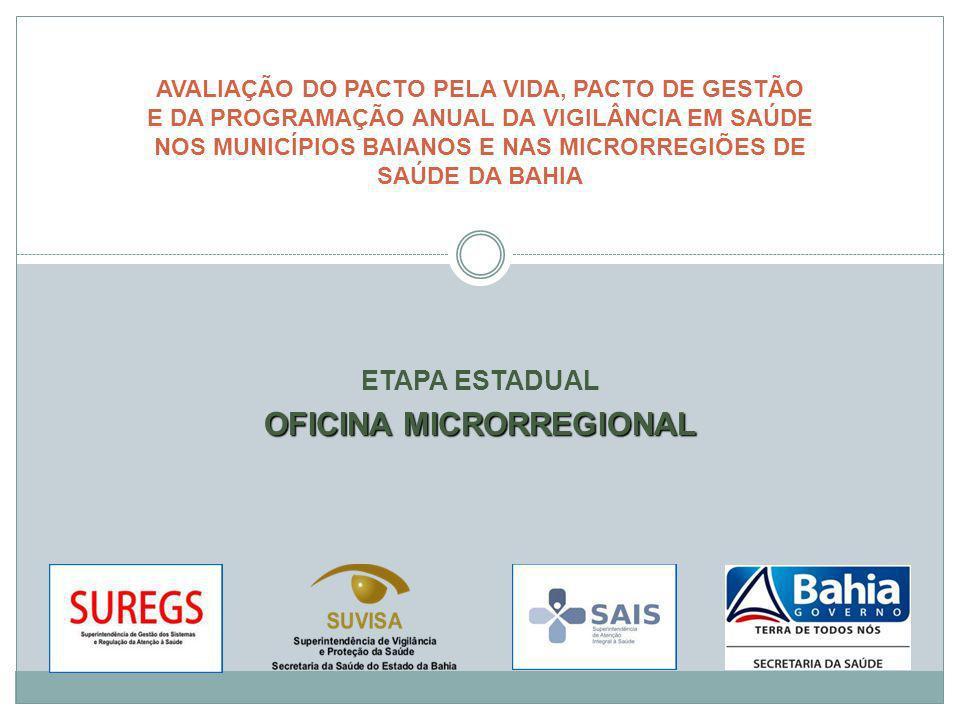 ETAPA ESTADUAL OFICINA MICRORREGIONAL