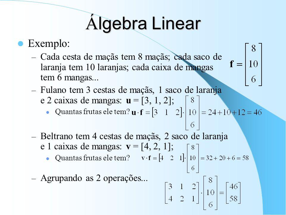 Álgebra Linear Exemplo: